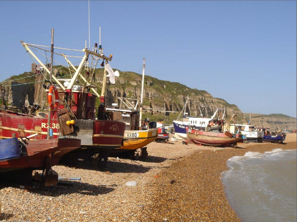 Discover Hastings coastline